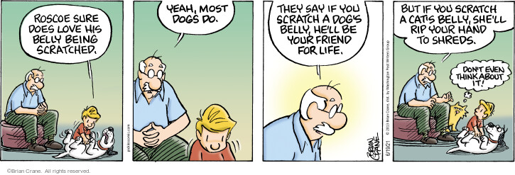 Comic Strip Brian Crane  Pickles 2021-06-19 say