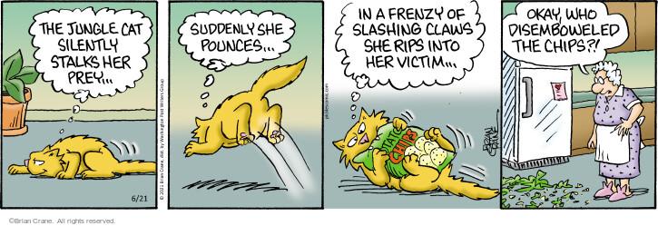 Comic Strip Brian Crane  Pickles 2021-06-21 she