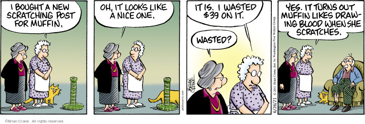 Comic Strip Brian Crane  Pickles 2021-06-26 she