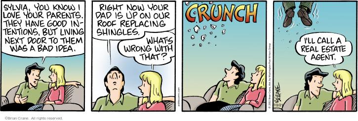 Comic Strip Brian Crane  Pickles 2021-07-02 they
