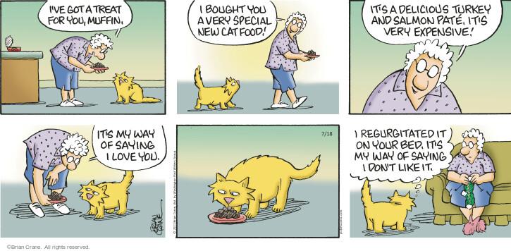 Comic Strip Brian Crane  Pickles 2021-07-18 very