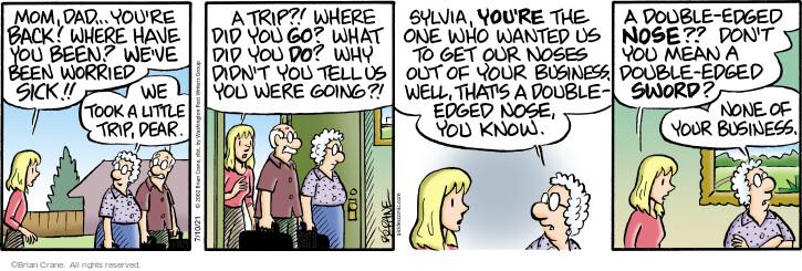 Comic Strip Brian Crane  Pickles 2021-07-10 you