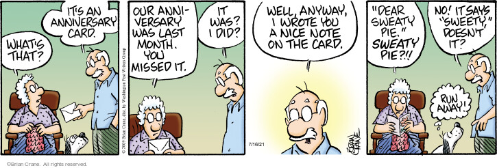 Comic Strip Brian Crane  Pickles 2021-07-16 say