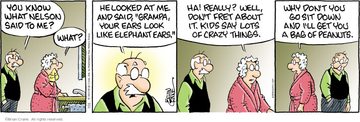 Comic Strip Brian Crane  Pickles 2021-07-21 say