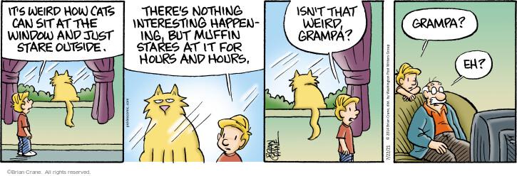 Comic Strip Brian Crane  Pickles 2021-07-22 grampa
