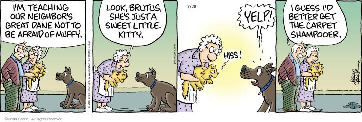 Comic Strip Brian Crane  Pickles 2021-07-28 she