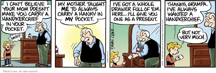 Comic Strip Brian Crane  Pickles 2021-07-31 Brian