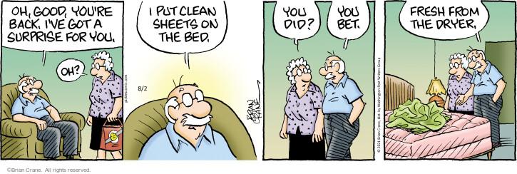 Comic Strip Brian Crane  Pickles 2021-08-02 Brian