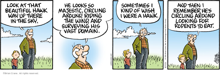 Comic Strip Brian Crane  Pickles 2021-08-07 Brian