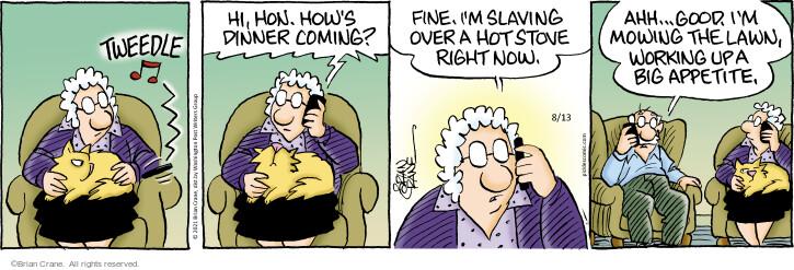 Comic Strip Brian Crane  Pickles 2021-08-13 now