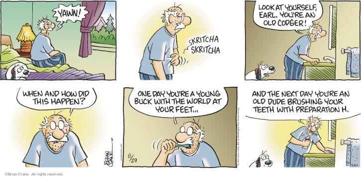 Comic Strip Brian Crane  Pickles 2021-08-29 your