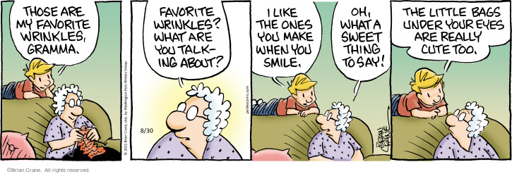 Comic Strip Brian Crane  Pickles 2021-08-30 favorite