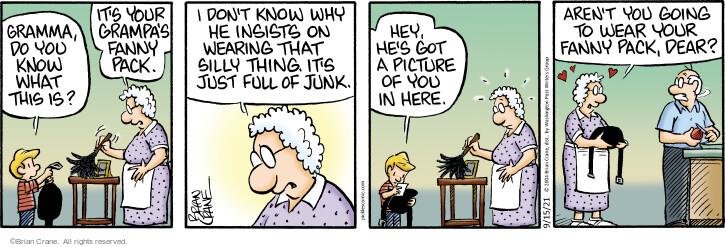 Comic Strip Brian Crane  Pickles 2021-09-15 relationship