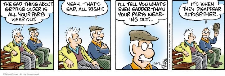 Comic Strip Brian Crane  Pickles 2021-10-09 your