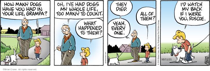Comic Strip Brian Crane  Pickles 2021-10-11 grampa