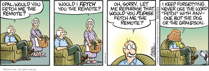 Comic Strip Brian Crane  Pickles 2021-10-23 strip