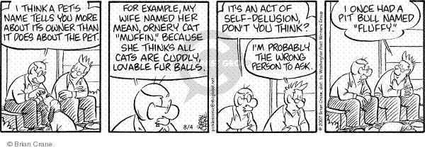 Comic Strip Brian Crane  Pickles 2007-08-04 reflection