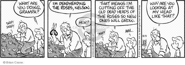 Cartoonist Brian Crane  Pickles 2007-08-09 rose