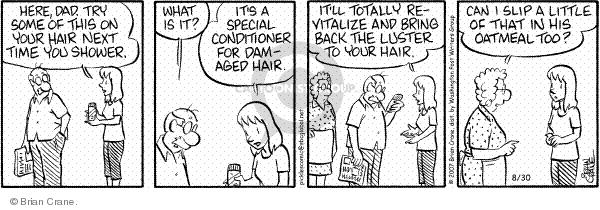 Comic Strip Brian Crane  Pickles 2007-08-30 conditioner