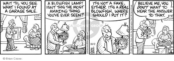 Comic Strip Brian Crane  Pickles 2007-10-02 lamp