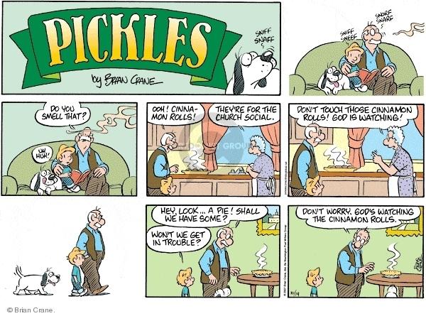 Comic Strip Brian Crane  Pickles 2007-10-14 grandson