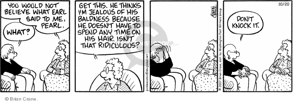 Comic Strip Brian Crane  Pickles 2007-10-20 baldness