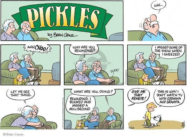 Comic Strip Brian Crane  Pickles 2007-10-28 blink