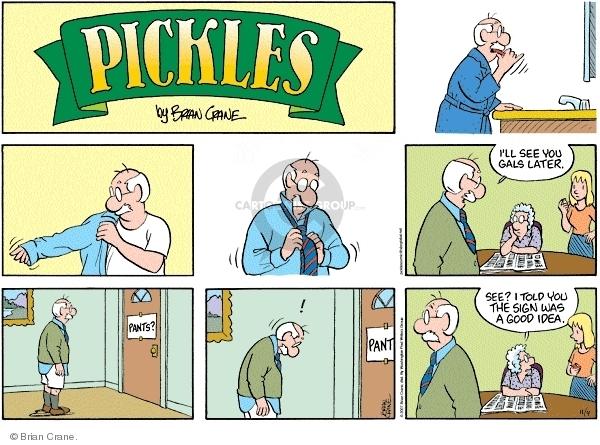 Comic Strip Brian Crane  Pickles 2007-11-04 memory