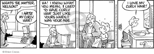 Comic Strip Brian Crane  Pickles 2007-11-10 grandson