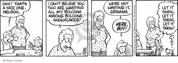 Comic Strip Brian Crane  Pickles 2007-11-22 grandson