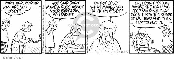 Comic Strip Brian Crane  Pickles 2007-11-30 frustration