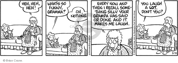 Comic Strip Brian Crane  Pickles 2008-03-31 grandmother