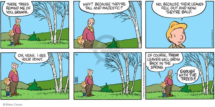 Comic Strip Brian Crane  Pickles 2008-01-06 baldness
