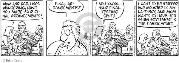 Comic Strip Brian Crane  Pickles 2008-01-07 husband