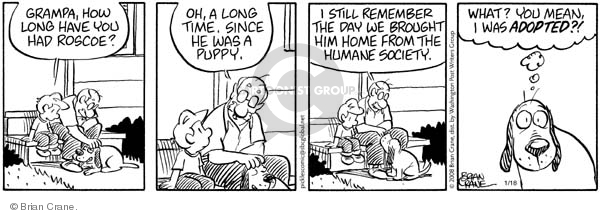 Comic Strip Brian Crane  Pickles 2008-01-18 puppy