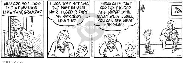 Comic Strip Brian Crane  Pickles 2008-01-31 baldness