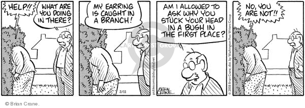 Comic Strip Brian Crane  Pickles 2008-02-11 first husband
