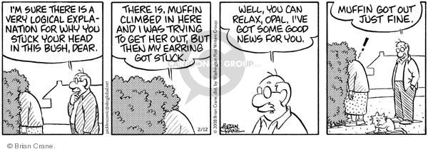 Comic Strip Brian Crane  Pickles 2008-02-12 earring