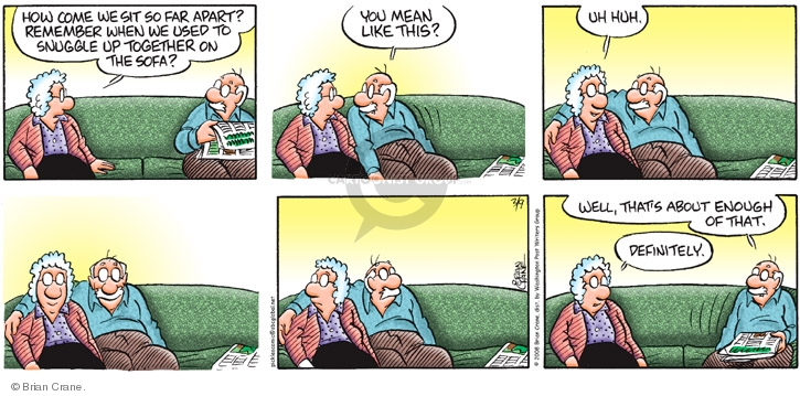 Comic Strip Brian Crane  Pickles 2008-03-09 old couch