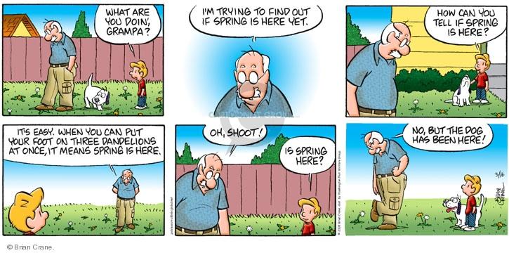 Comic Strip Brian Crane  Pickles 2008-03-16 grandchild