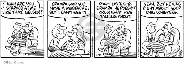 Comic Strip Brian Crane  Pickles 2008-04-16 grandmother