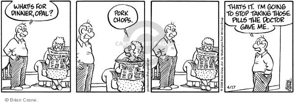 Comic Strip Brian Crane  Pickles 2008-04-17 husband