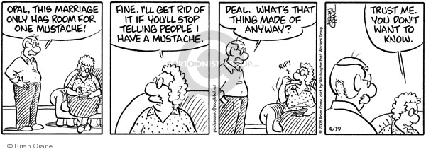 Comic Strip Brian Crane  Pickles 2008-04-19 hair