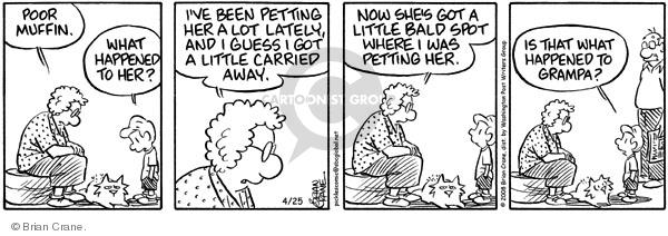 Comic Strip Brian Crane  Pickles 2008-04-25 grandchild