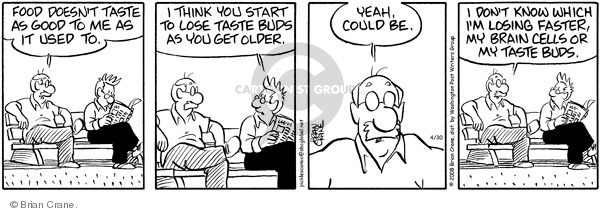 Comic Strip Brian Crane  Pickles 2008-04-30 memory