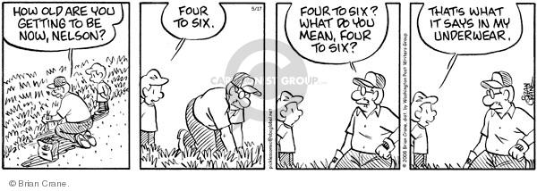 Comic Strip Brian Crane  Pickles 2011-10-29 get old