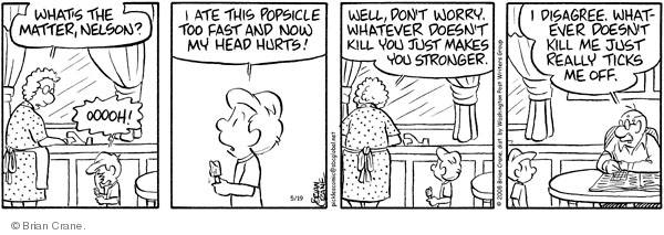 Comic Strip Brian Crane  Pickles 2008-05-19 grandson