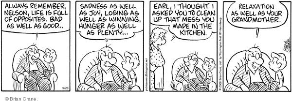 Comic Strip Brian Crane  Pickles 2008-05-20 husband