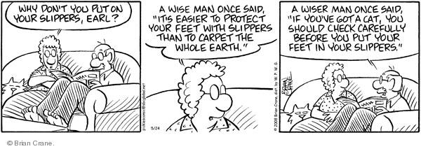 Comic Strip Brian Crane  Pickles 2008-05-24 slipper