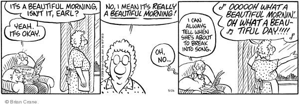 Comic Strip Brian Crane  Pickles 2008-05-26 husband